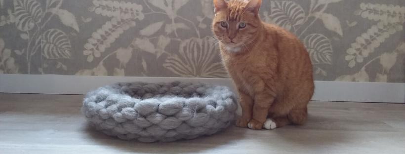 kattenmand-patroon-charlie